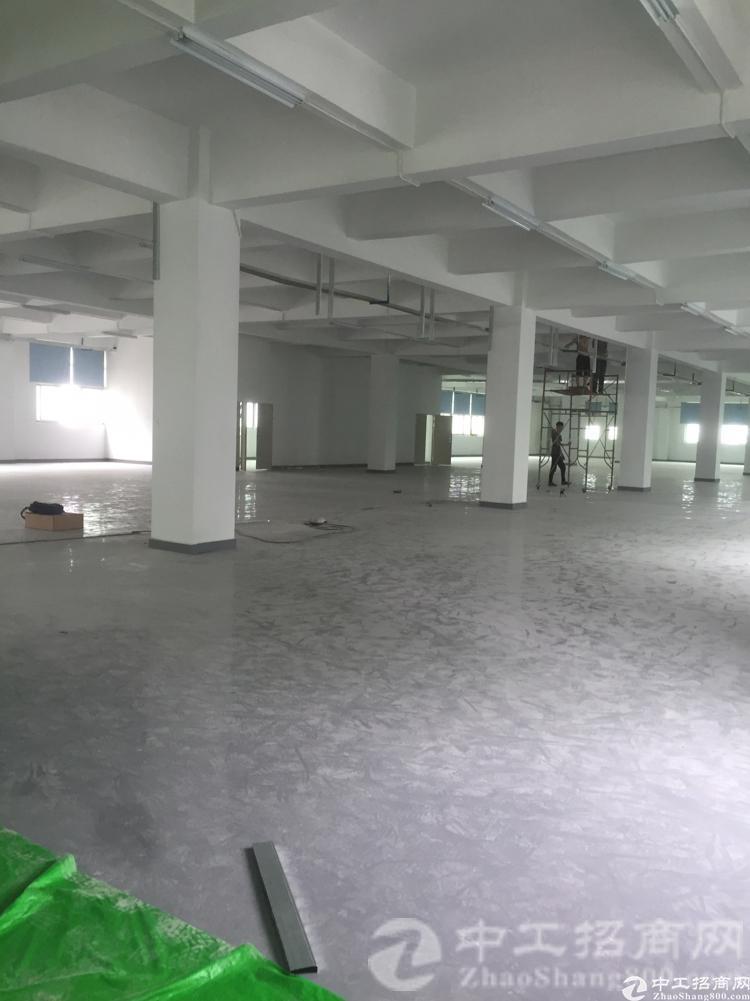 厚街镇宝屯村现有标准独院厂房三楼1300平米整层招租