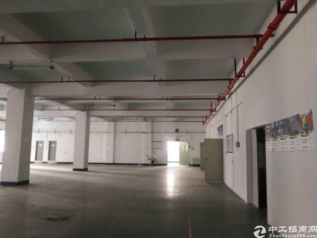 福永楼上带装修1100平靠近沿江高速口