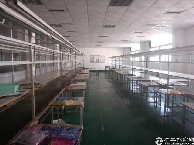 西乡银田红本厂房2600㎡出租-图6