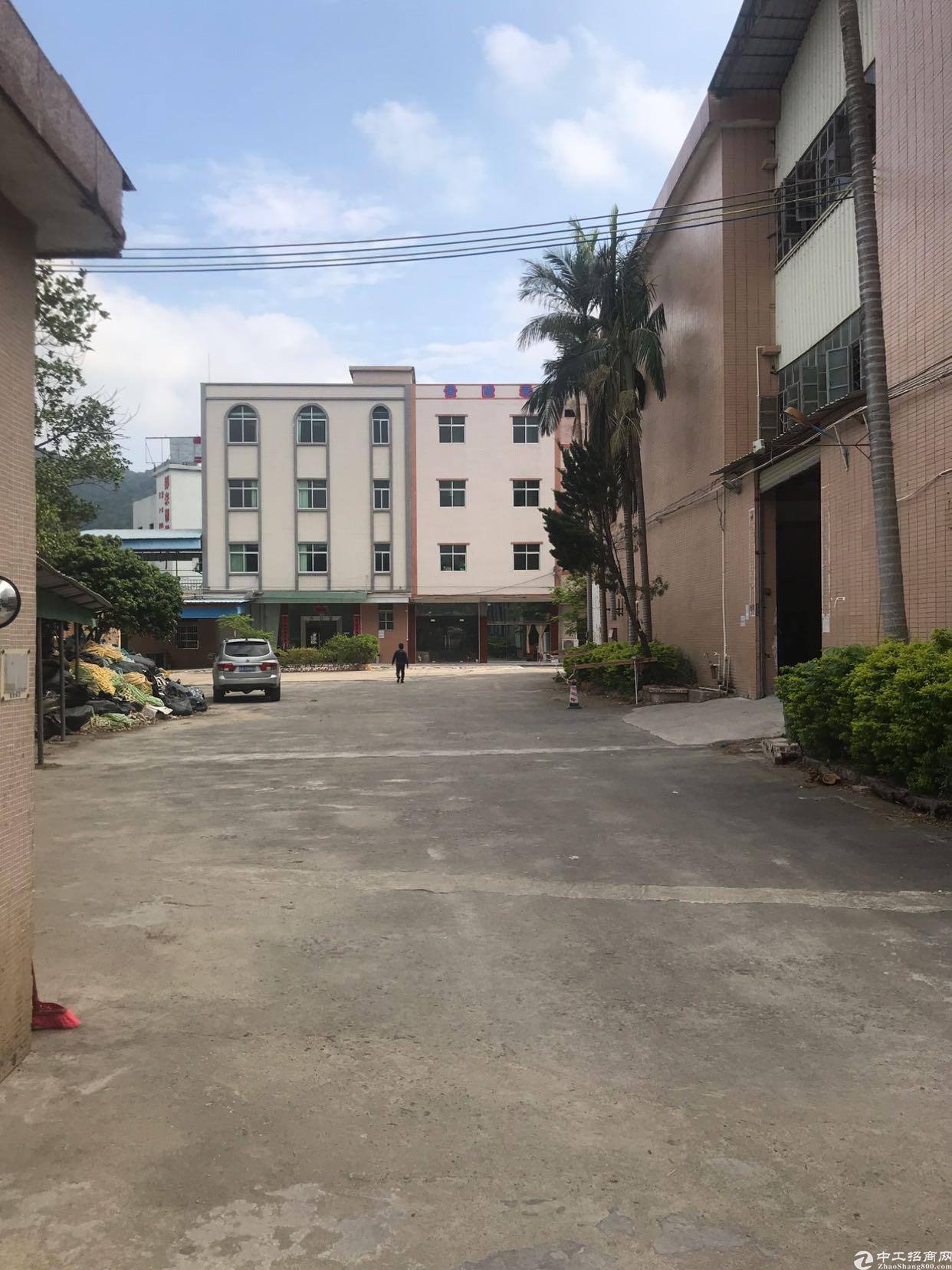 惠东平山原房东一楼厂房招租3000平