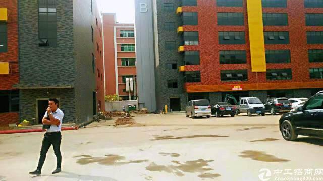 龙华汽车站后原房东全新独院创意园区直租图片1