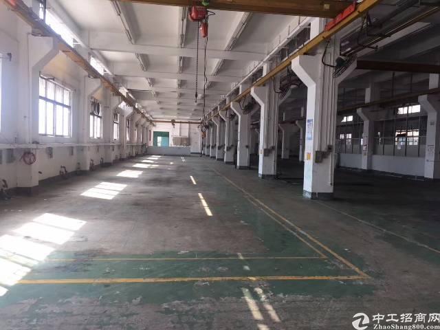 宝安大道旁银田工业区花园式整栋独院2000平厂房出租