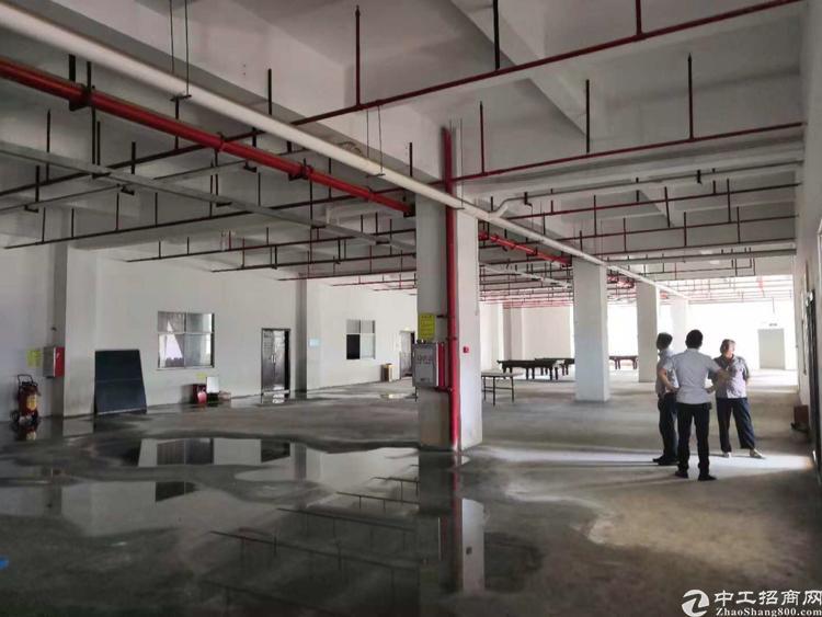 坪山坑梓40000平米红本厂房可分租,空地超级大