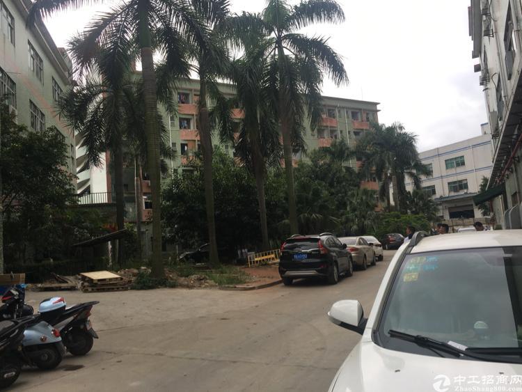 沙井镇经典小独院1-4层2800平米原房东出租