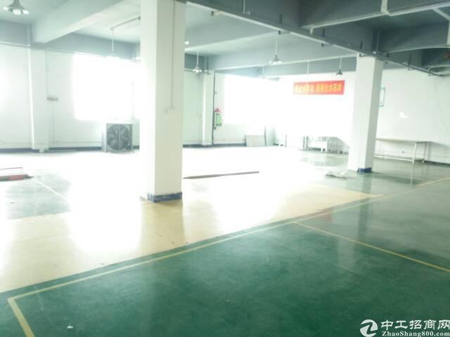 2000平方米带豪华办公室装修厂房出租