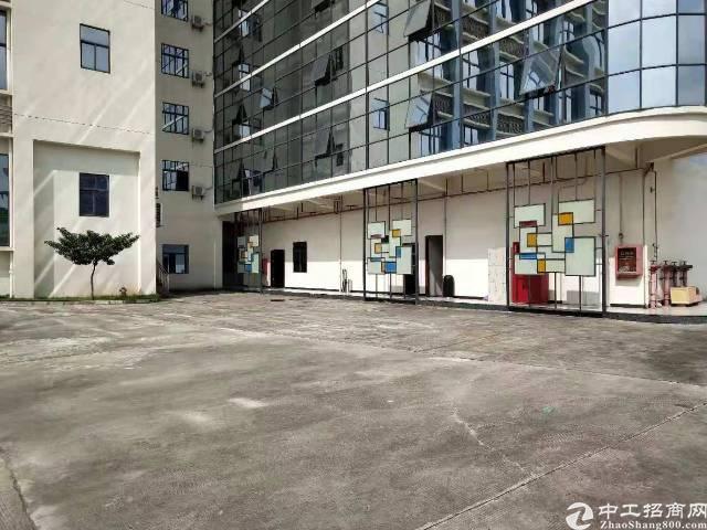 光明新出2楼整层1380平方[带红本]