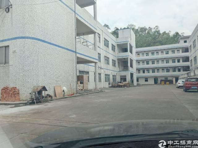 平湖独门独院厂房6000平方出租