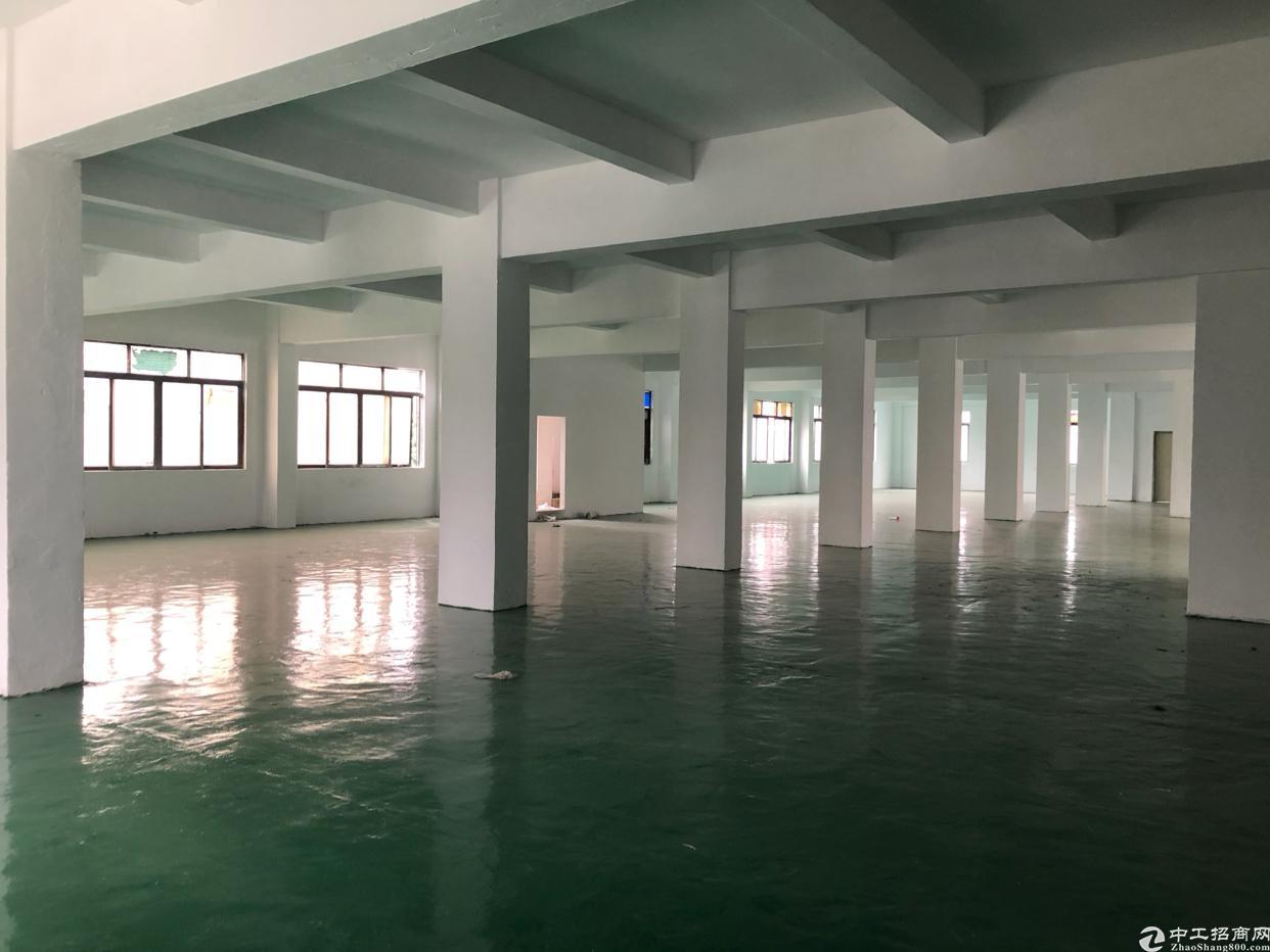 平湖带装修厂房出租
