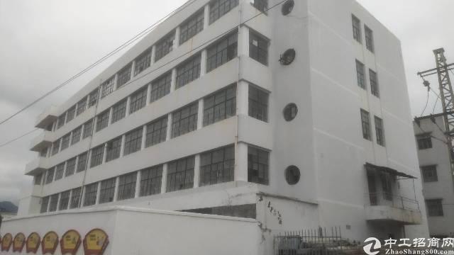 惠阳秋长新出楼上精装修标准厂房400平