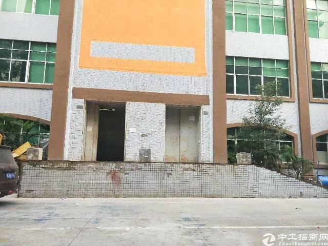 宝安九围京港澳高速口1000平方红本标准厂房出租