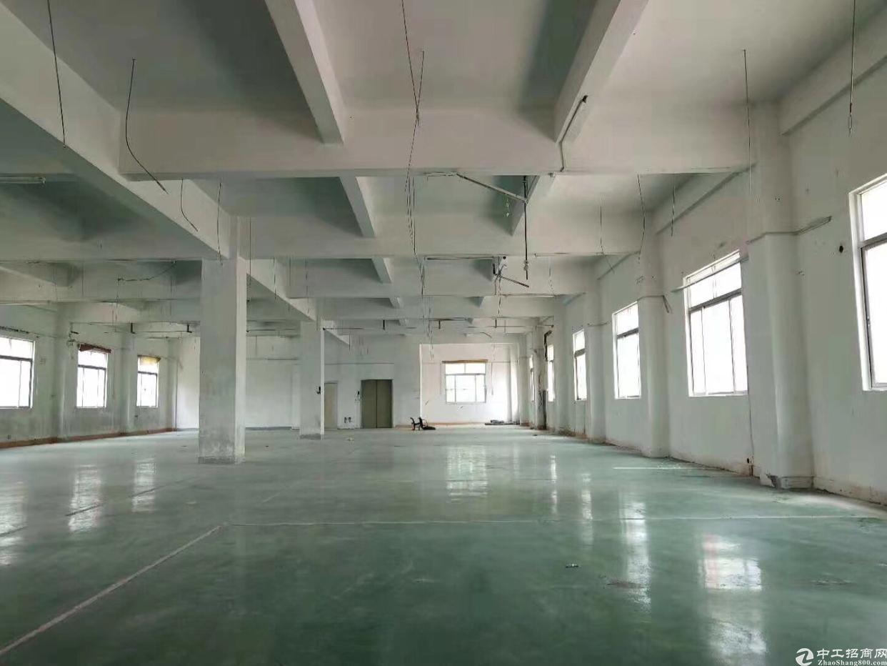 虎门威远新出3000平米单一层厂房出租