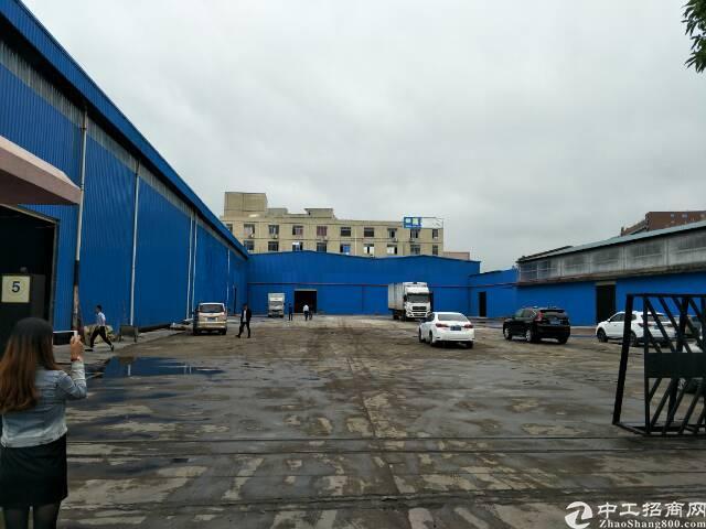 西丽滴水10米高全新钢结构厂房出租