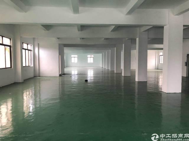 带地皮漆全新装修厂房招租,1100平,工业区,交通非常便利