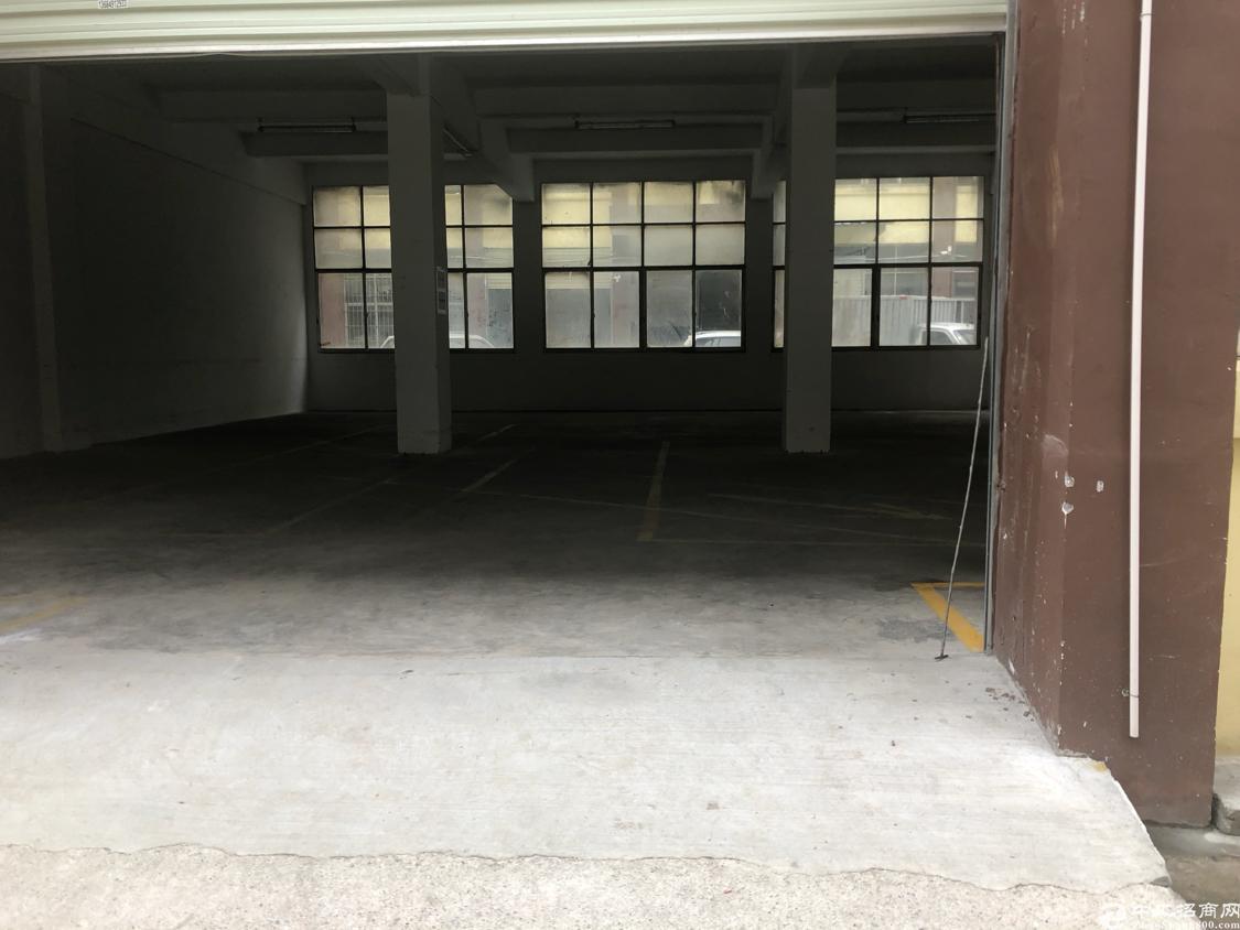 龙华油松新出稀缺房源一楼400平标准厂房