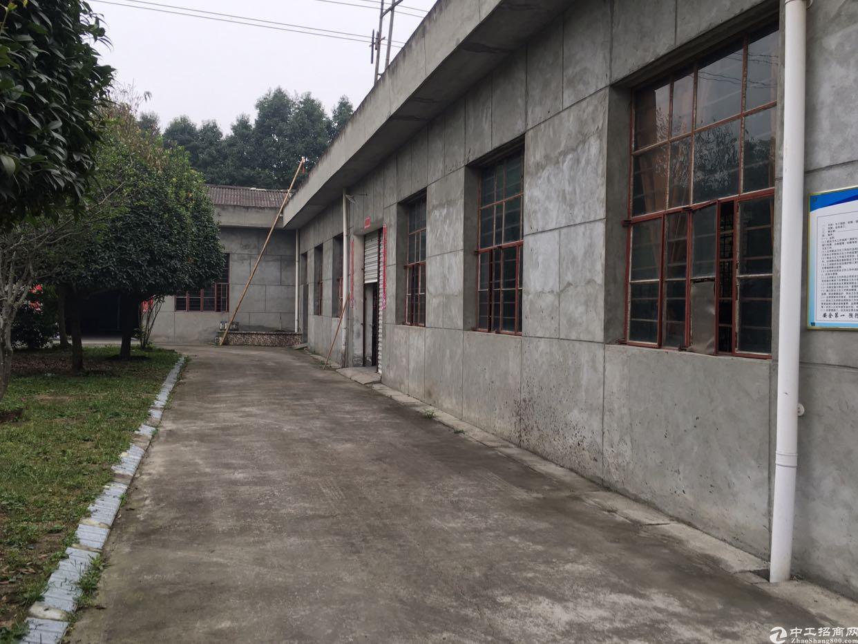 优质厂房出租可用于轻加工生产可用于库房