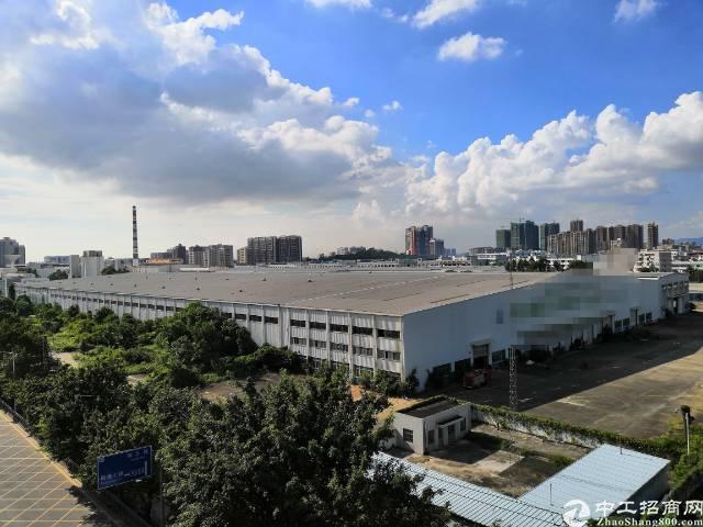 大岭山镇玻璃厂 ①单一层6000平方带牛角砖墙到顶十四米高厂