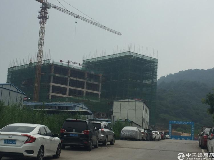 新建独门独院交通便利空地大标准厂房