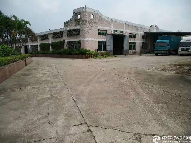 新圩原房东大型工业园钢构厂房3栋3000平方2栋1200平方