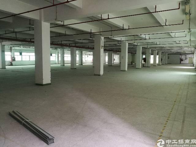 西乡固戍南昌楼上整层2000平米仓库出租