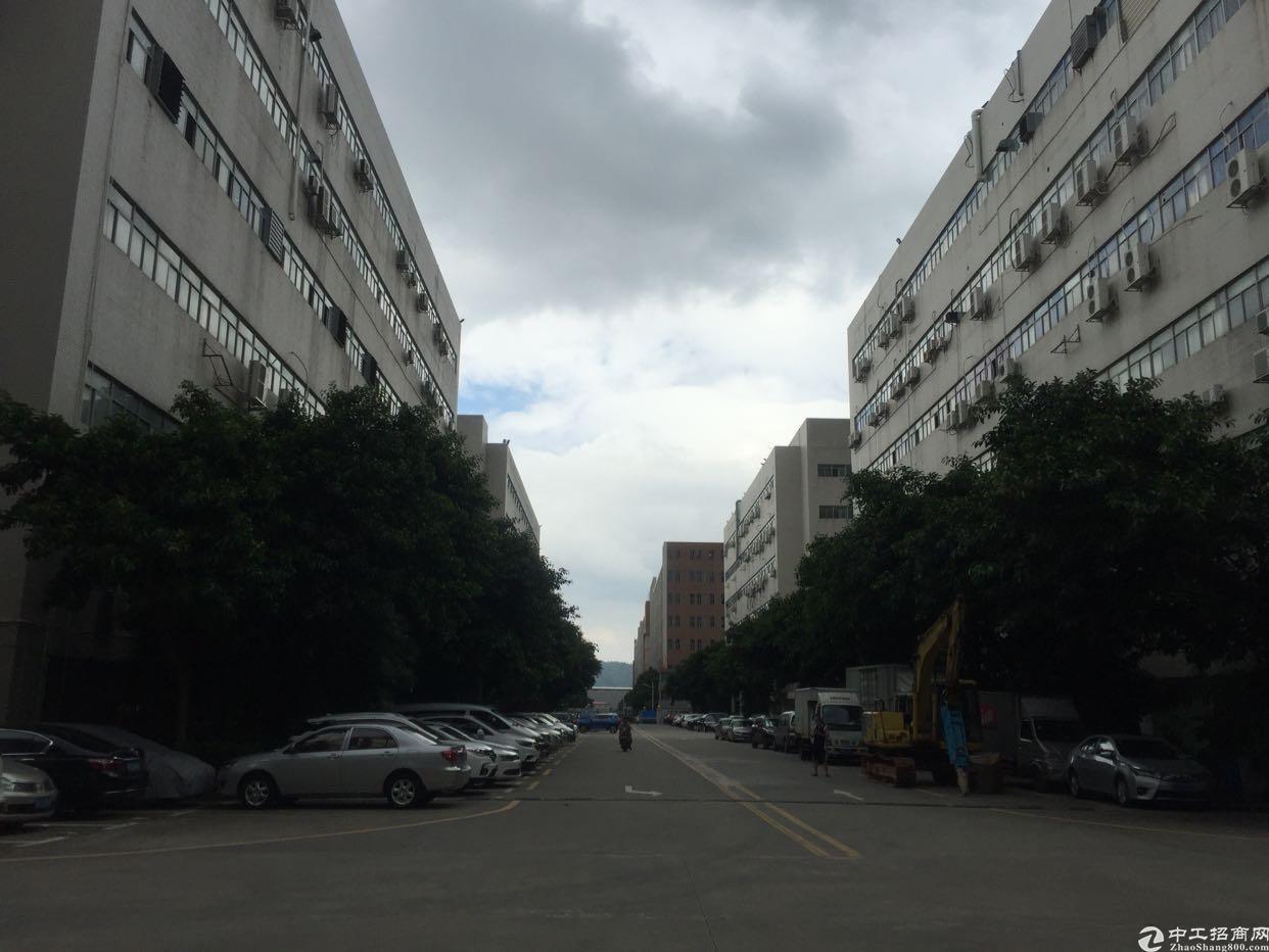 西乡黄田107国道高新产业园楼上1800平厂房出租