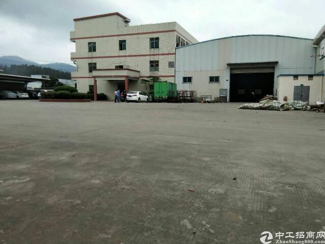 惠阳新圩原房东带红本独门独院钢构12000平,滴水高度8米