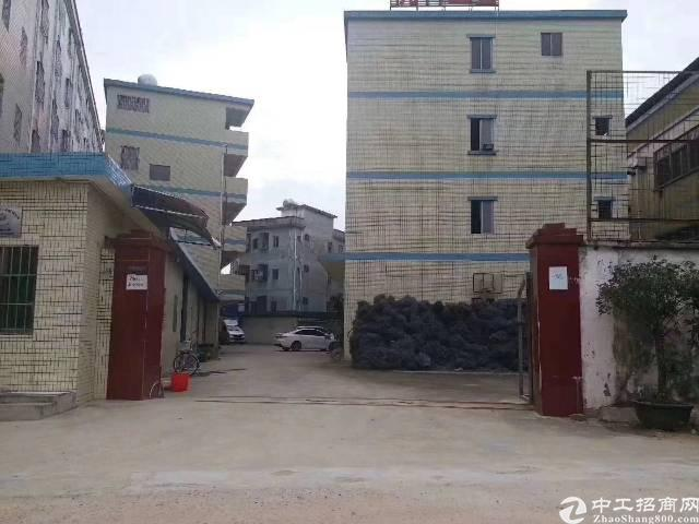 大岭山3层3350平宿舍及办公1150平方独院厂房出租