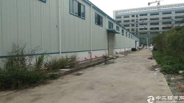 水口高新工业区新出1300平方钢构厂房出租