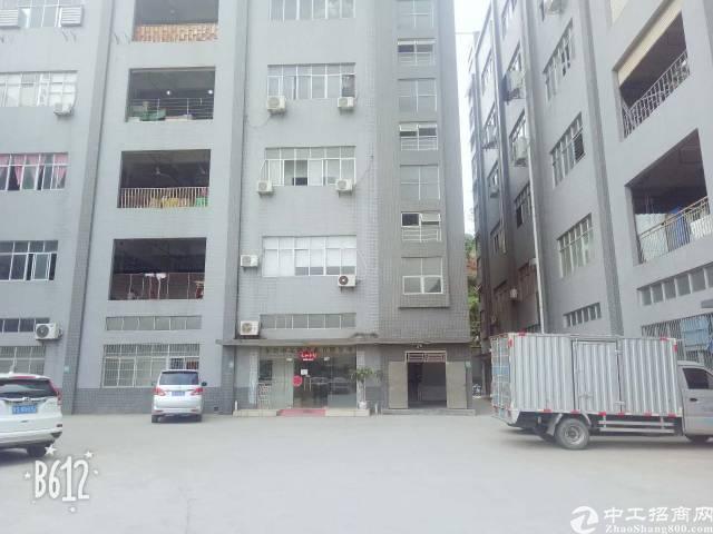 凤岗新出六楼400平米带地坪漆标准厂房