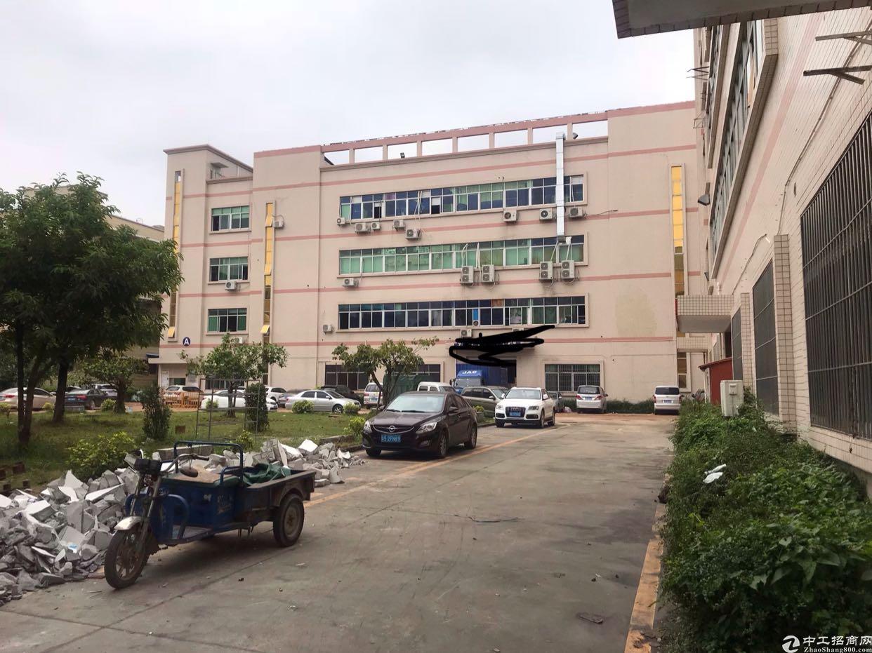 观澜桂花梅观高速出口附近出楼上带办公室标准厂房500平出租