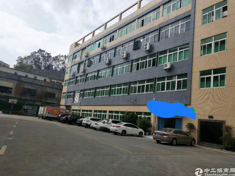平湖花园式厂房出租,原房东带装修办公室