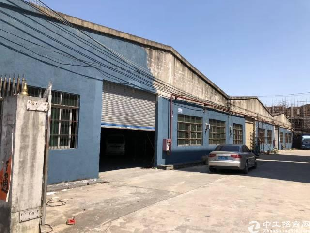 高埗镇塘厦村独院厂房出租砖墙到顶单一层