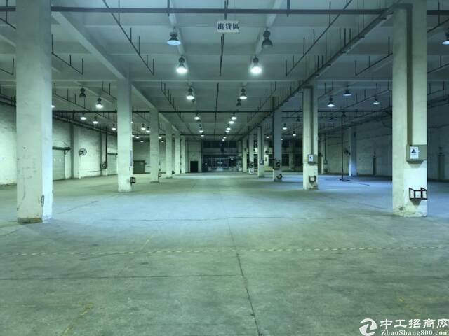 东莞市大朗镇新出滴水9米标准厂房出租