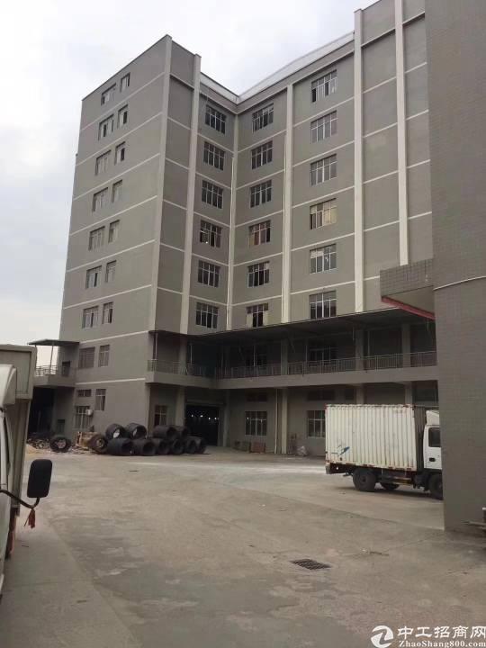 新圩独院标准分租单层 3602