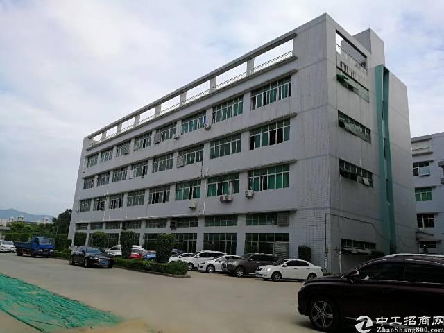 公明龙大高速口原房东独门独院四层6000平方,宿舍1500平