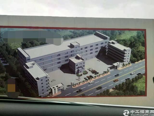 东莞企石新出原房东独院标准厂房2万平方