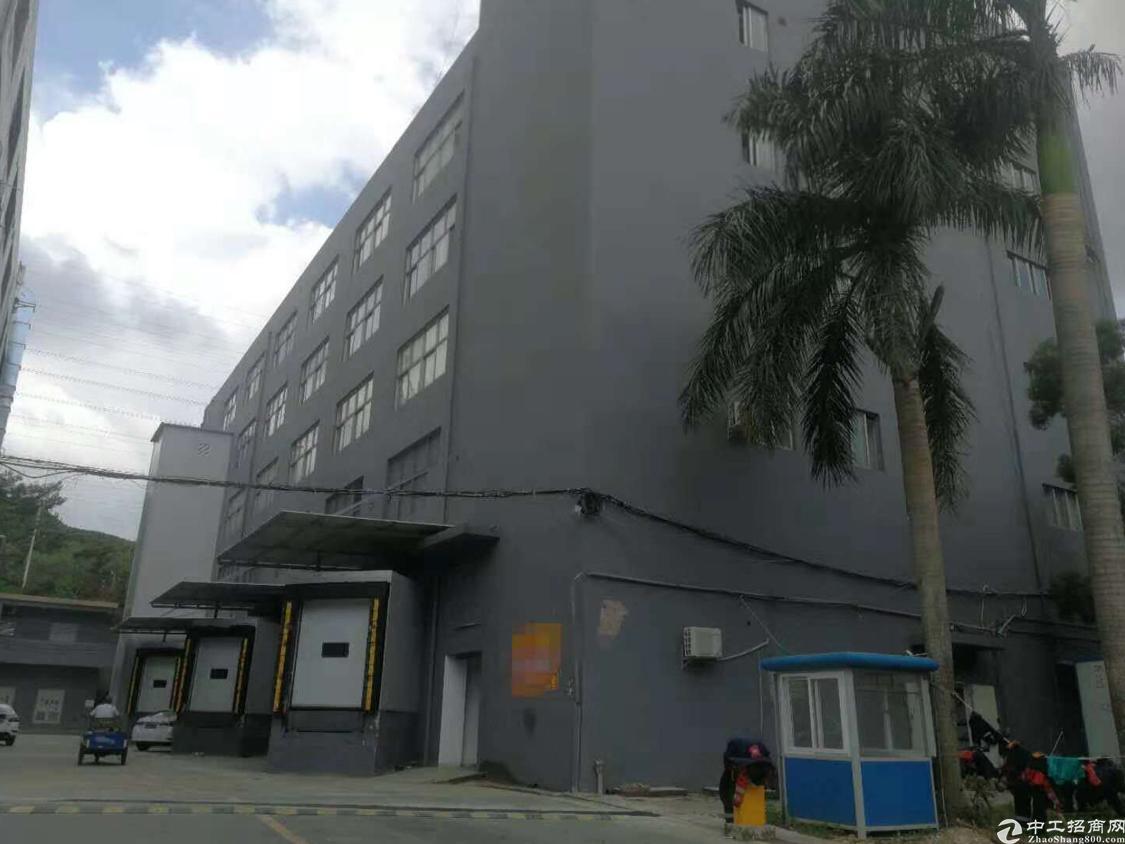 西丽留仙洞新出楼上1450平米带装修厂房出租