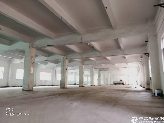 公明最漂亮独院6800平米厂房出租