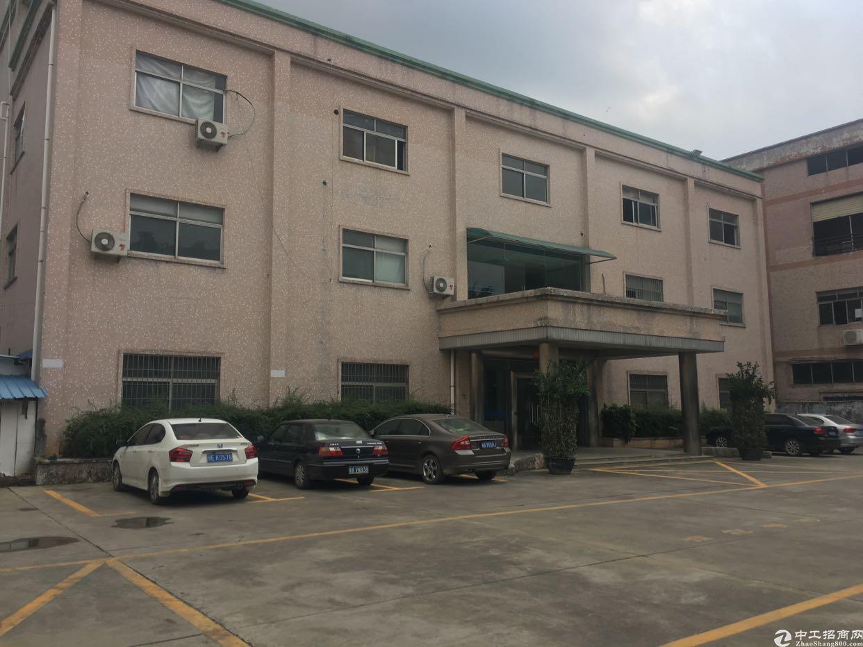 松岗红星宝安大道边新出楼上原房东厂房800平方米