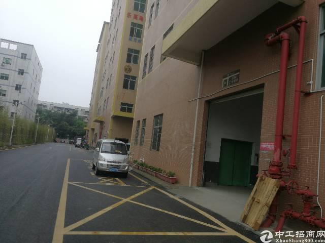 福永凤凰107国道500米带装修厂房