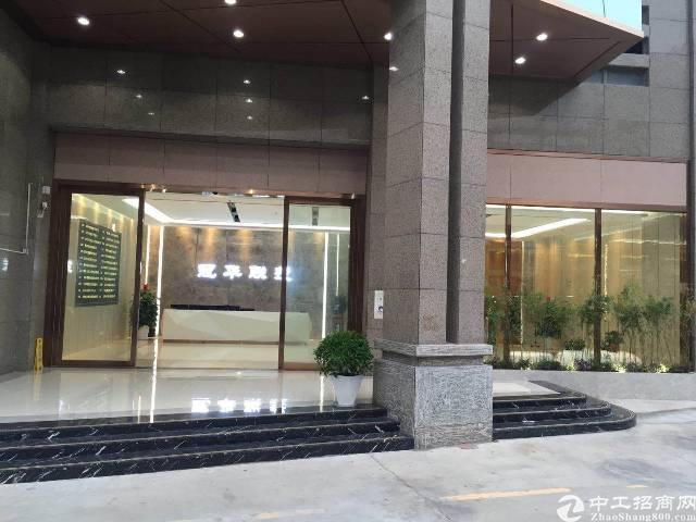 深圳沙井会展中心附近带装修办公楼出租