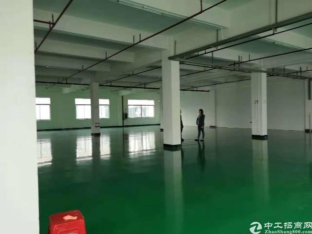 东莞市石排镇原房东标准厂房出租