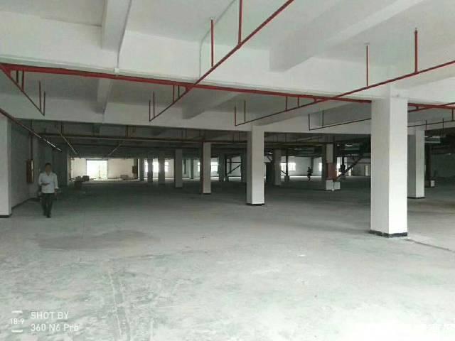 长安镇新出楼上带装修厂房