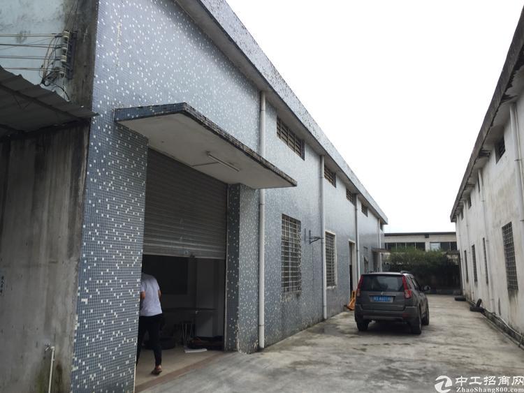 道滘原房东 700平小独院 零公摊 现成水电 办公室
