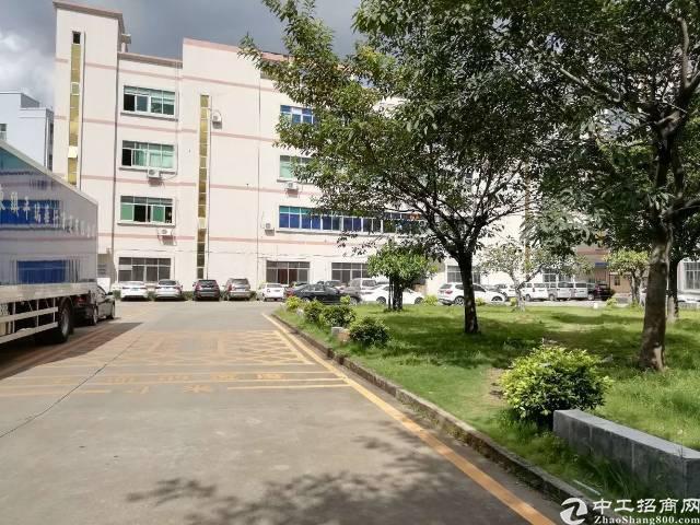 石龙占地面积6300平建筑面积7500平厂房出售