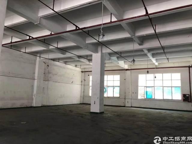 福永新和考虑入口一楼1100平厂房带阁楼出租