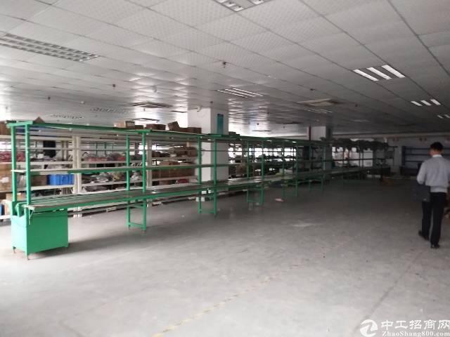 沙井新出楼上1300平米厂房出租