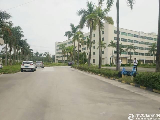 石岩大型产业园4栋50000平方厂房出租,可分租