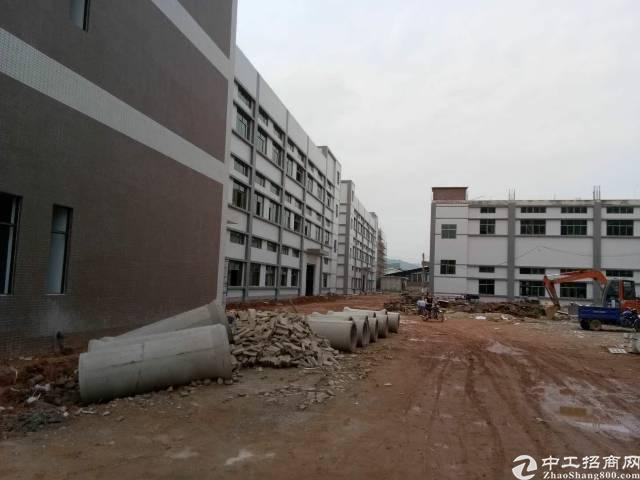 惠州博罗泰美现有独门独院标准厂房42000平米大小可分租