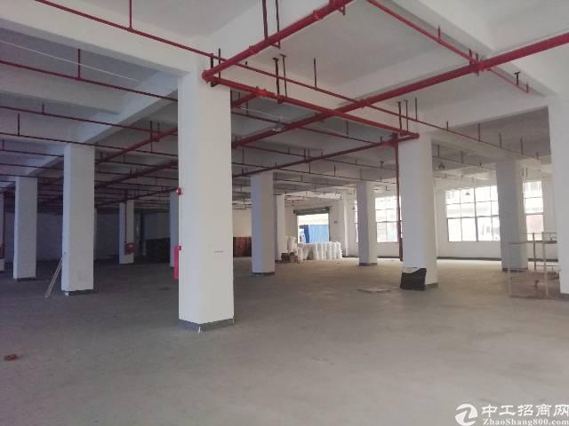 凤岗镇浸校塘新出一楼标准厂房1350平米高六米适合各种行业