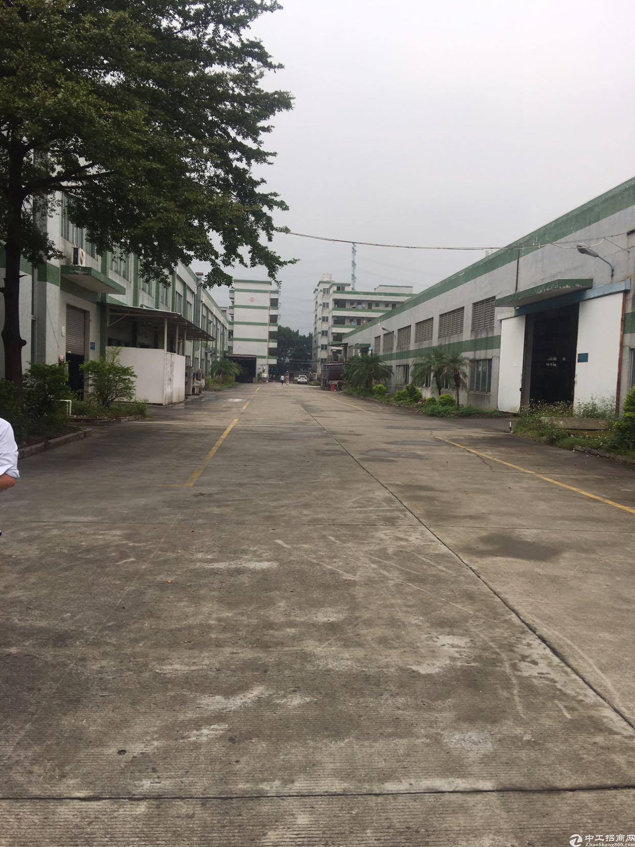 高埗带行车滴水12米的钢构厂房出租